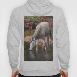 Beautiful White Horse and Enchanting Spring Hoody