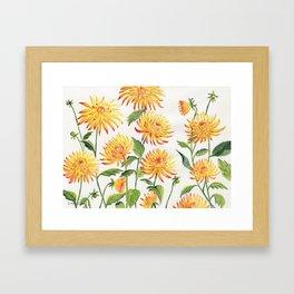 Dahlia Flowers 2 Framed Art Print