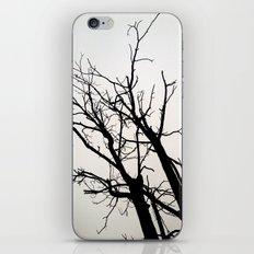 Fell In Fall iPhone & iPod Skin