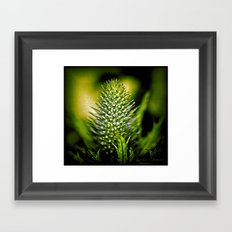 Just green Framed Art Print
