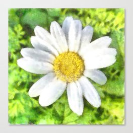 Radiant Daisy Watercolor Canvas Print