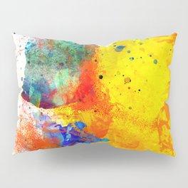The expansive Impulse Pillow Sham