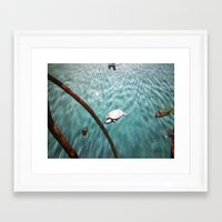 turtle Framed Art Prints featuring TURTLE by JANUARY FROST