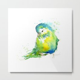 Budgie Series - IV Blue/Green Metal Print