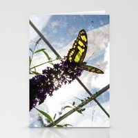 malachite Stationery Cards featuring Malachite Butterfly by Jacqueline Clark