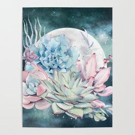 Beautiful Succulents Full Moon Teal Pink Poster