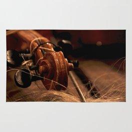 Scroll  & Horsehair Rug