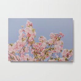 Pink pastels in the sky Metal Print