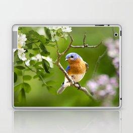 Bluebird Laptop & iPad Skin