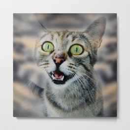 Cat Shocked Metal Print