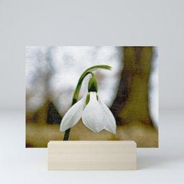 Moody Snowdrop Mini Art Print