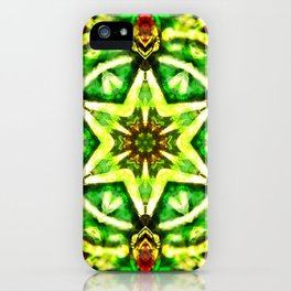 Twelve Around the One Redux - The Mandala Collection iPhone Case