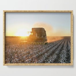 Cotton field harvest sunset  Serving Tray