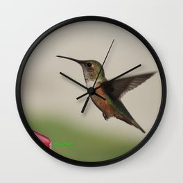 Ms. Hummingbird Checks the Feeder Wall Clock