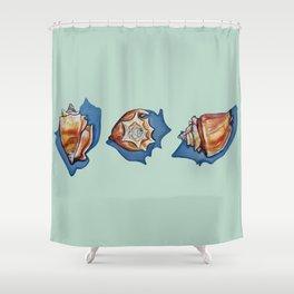 Three Seashells in Green Shower Curtain