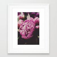 gatsby Framed Art Prints featuring Gatsby by Chelsea Victoria