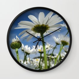 Daisy Flowers, Petals, Blossoms - White Green Wall Clock