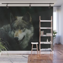 Gray Wolf (Color) Wall Mural