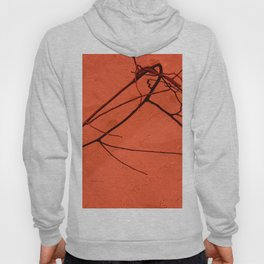 Red sand Hoody