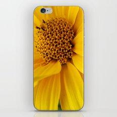 sunny yellow iPhone & iPod Skin