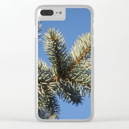All spruced up and still blue - Blue spruce, blue sky 1564 Clear iPhone Case