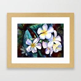 Evening Plumeia Framed Art Print