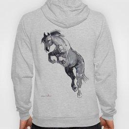 Horse (Jump) Hoody