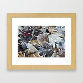 Autumn ends, Winter begins 1 Framed Art Print