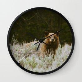 Bush Bear Wall Clock