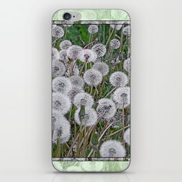SEEDS OF DANDELION iPhone Skin