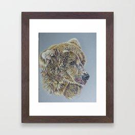 Otis, Golden Bear Framed Art Print