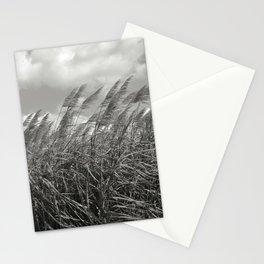 sugar cane field  Stationery Cards