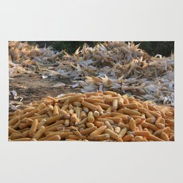 Sweet Corn and Husks Rug