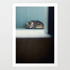 Country Cat Art Print