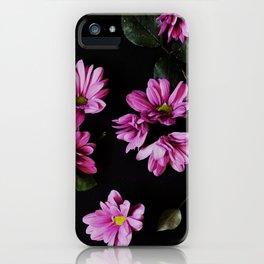 Giardino di Notte iPhone Case