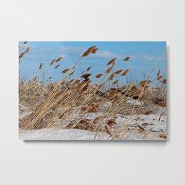 Tame a Wild Wind (horizontal) Metal Print