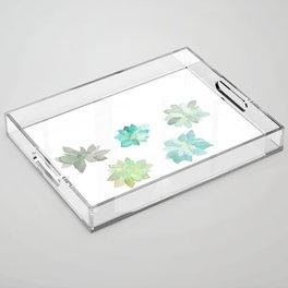 Succulents Acrylic Tray