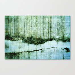 Wall with a river view Canvas Print
