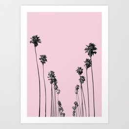 Palm trees 13 Art Print