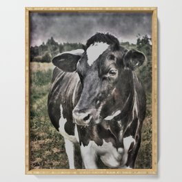 Melancholic Black White Dutch Cow Serving Tray