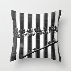 Pigeon Rows Throw Pillow