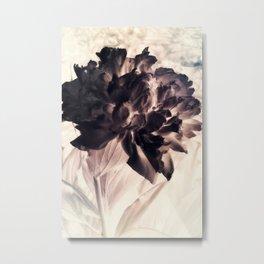 Black And White Peony Metal Print