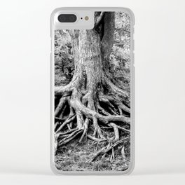Spread Out, Hold On Clear iPhone Case