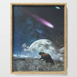 Bears and Falling Stars Serving Tray