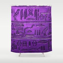 Hieroglyphs 2014-1029 Shower Curtain