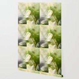 White Blossom Flower Green Leaves #decor #society6 Wallpaper