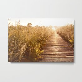 boardwalk and morass grass Metal Print