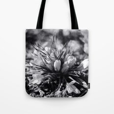Sunlit Crocus in Black and White Tote Bag