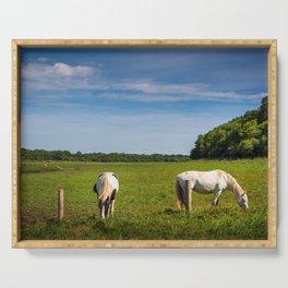 Horses grazing in Ireland Serving Tray