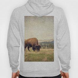 Bison Land Hoody